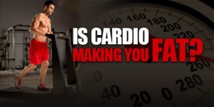 sm_cardio-fat-banner