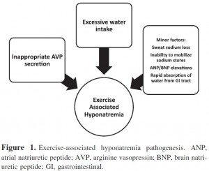 exercise associated hyponatremia pathogenesis
