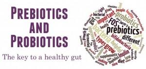 prebioticsandprobiotics